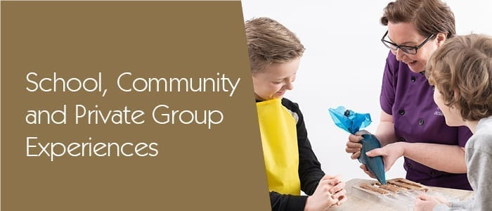 School Community Experiences